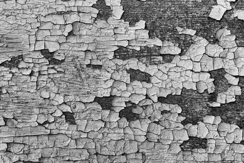 Fundo preto e branco, de madeira das pranchas com pintura marrom velha imagem de stock