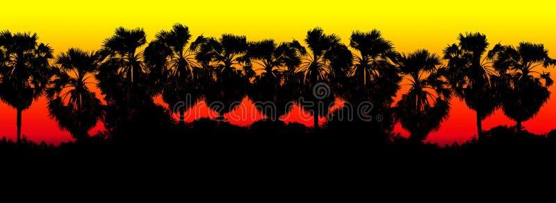 Fundo preto vermelho colorido da silhueta do ramo de palmeira do açúcar da fileira, selva do fundo da palma da forma da árvore, p fotografia de stock