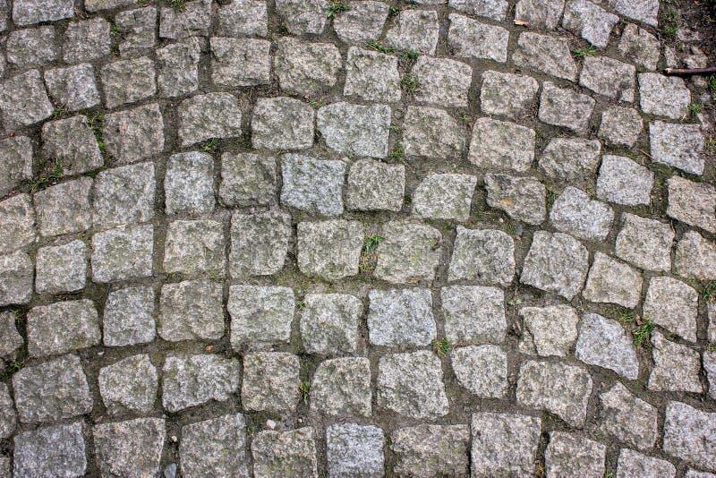 Fundo quadrado bege cinzento da pedra de pavimentação da pedra de Praga fotos de stock royalty free