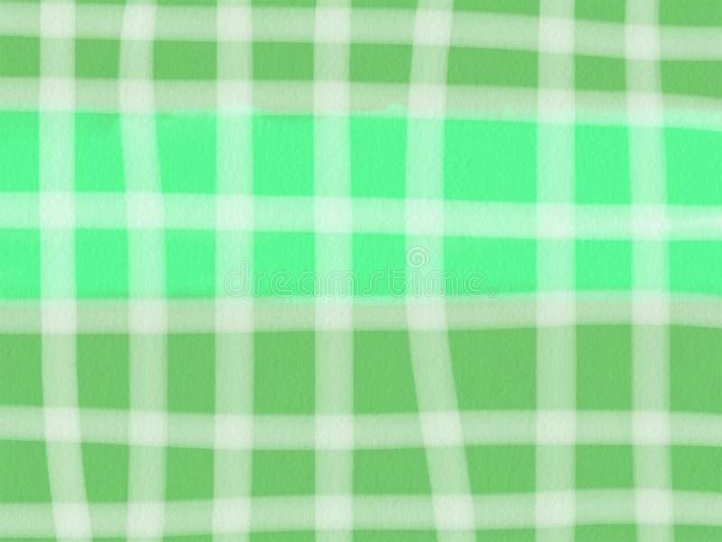 Fundo quadriculado do verde do sum?rio com linhas brancas ilustração do vetor
