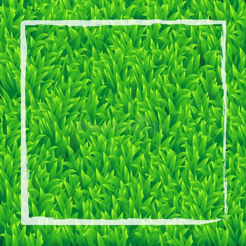 Fundo realístico da grama verde com o DES branco do vetor do retângulo ilustração do vetor
