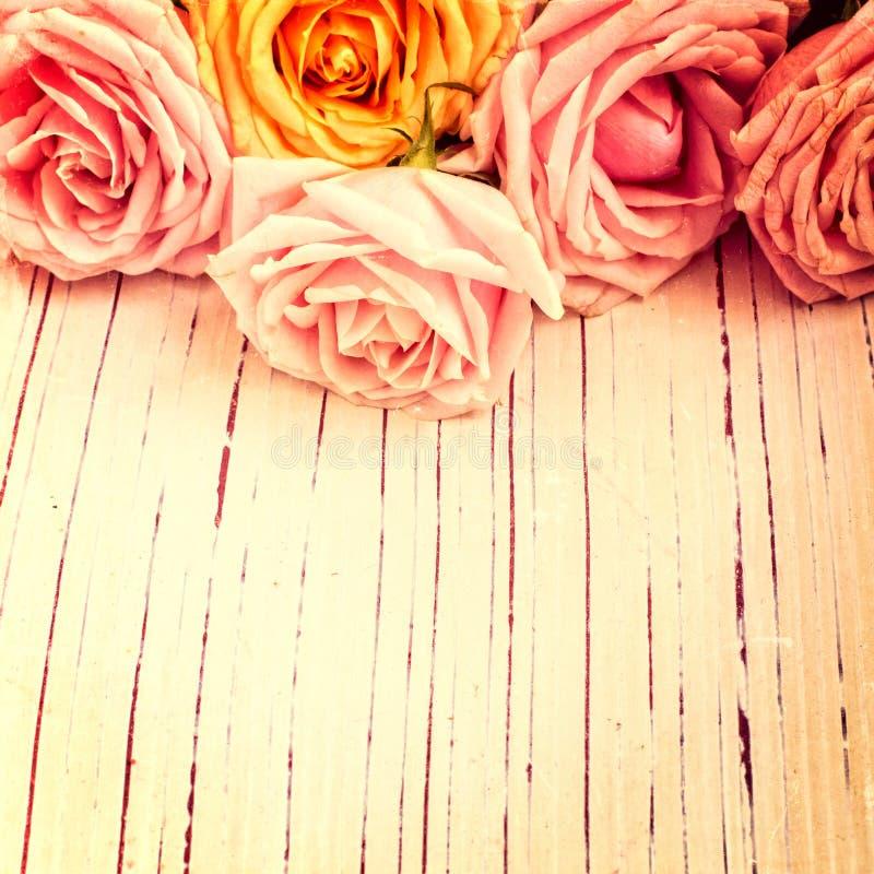 Fundo retro do vintage com rosas imagens de stock royalty free