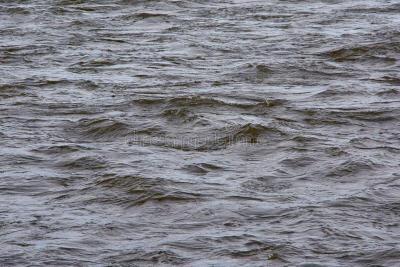 Fundo rippling escuro da superfície da água foto de stock royalty free