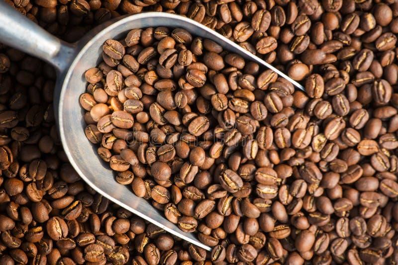Fundo roasted fresco dos feijões de café foto de stock