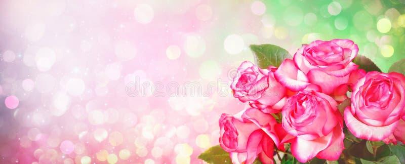 Fundo romântico com o ramalhete de rosas cor-de-rosa para os Valentim a Dinamarca fotografia de stock