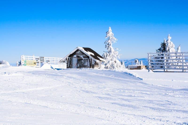 Fundo rural do inverno das férias com a casa alpina de madeira pequena, pinhos brancos, cerca, campo de neve, montanhas fotos de stock royalty free