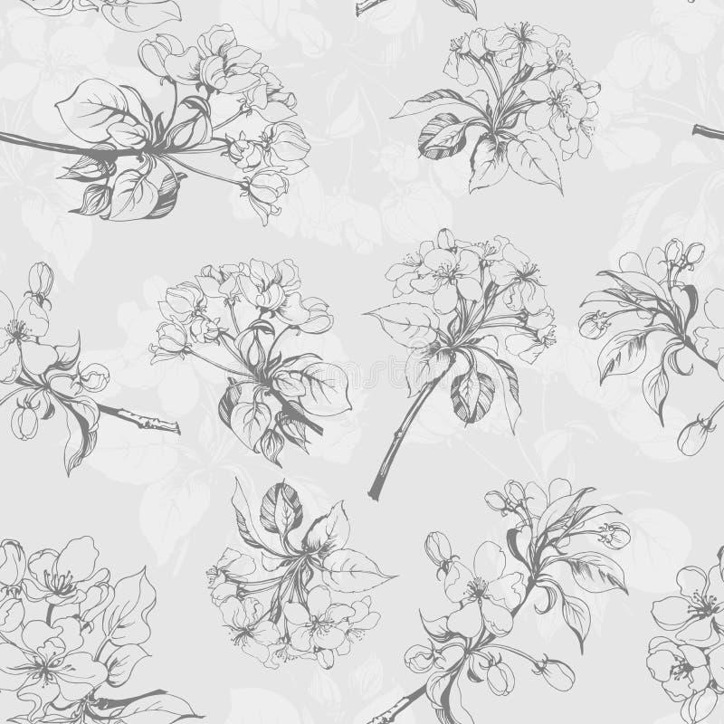 Fundo sem emenda com flores de Apple Vetor ilustração do vetor