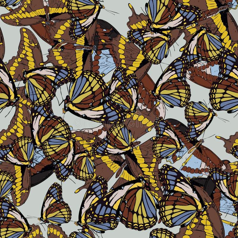 Fundo sem emenda com um teste padr?o das borboletas Aglais io, Parnassius Apollo, atropos do Acherontia, machaon de Papilio ilustração stock