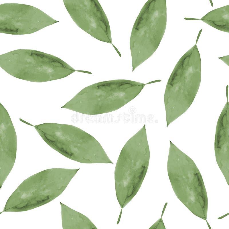 Fundo sem emenda da aquarela das folhas ilustração stock