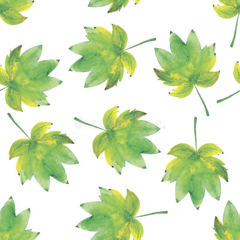 Fundo sem emenda da aquarela das folhas ilustração do vetor