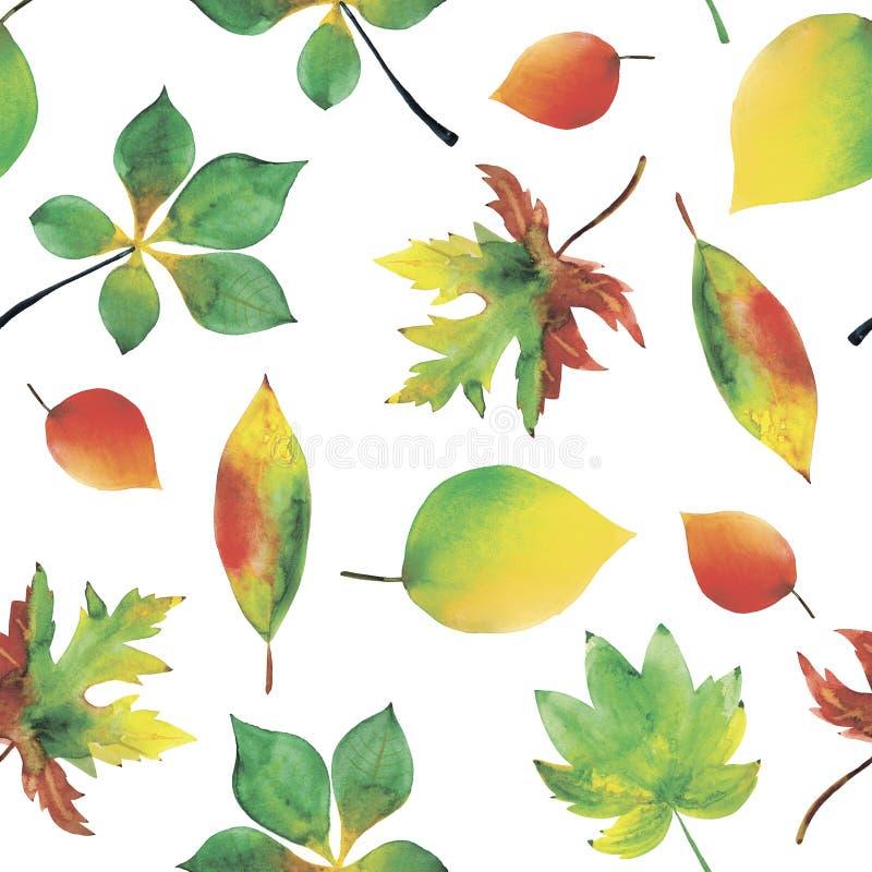 Fundo sem emenda da aquarela das folhas do outono ilustração stock