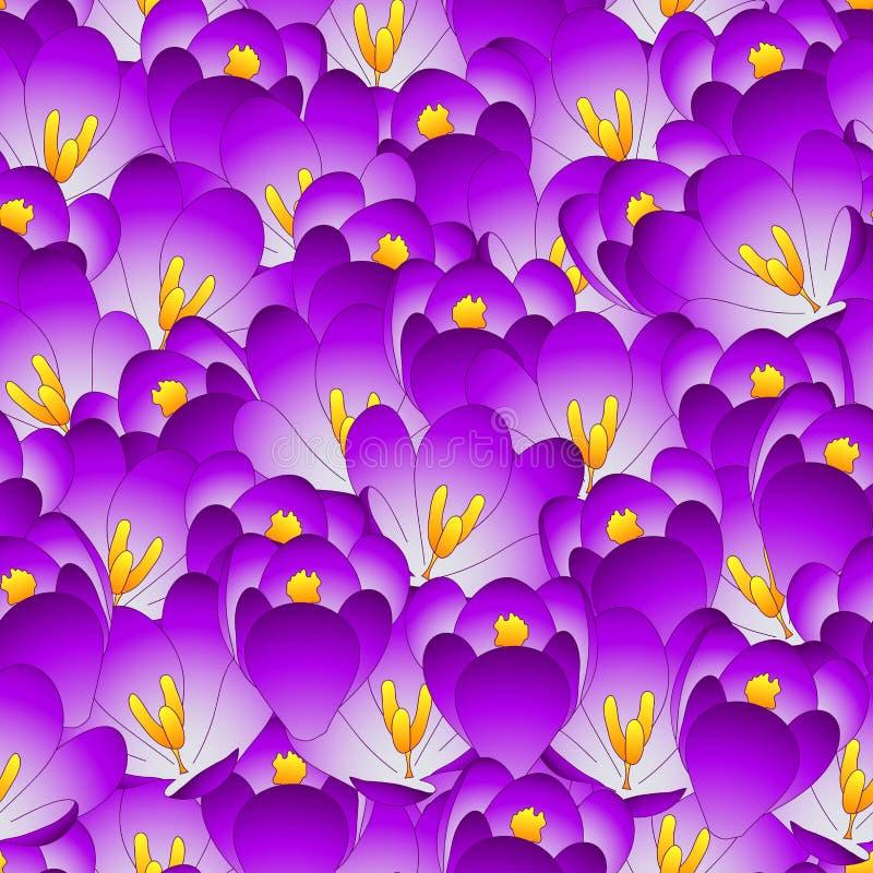 Fundo sem emenda da flor roxa do açafrão Ilustração do vetor ilustração do vetor