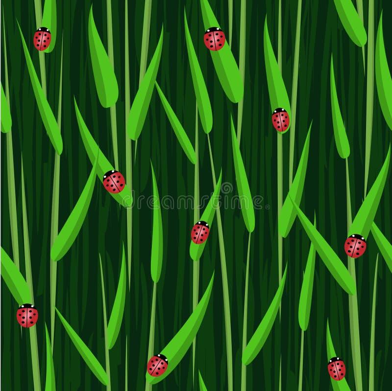 Fundo sem emenda da joaninha da grama ilustração do vetor