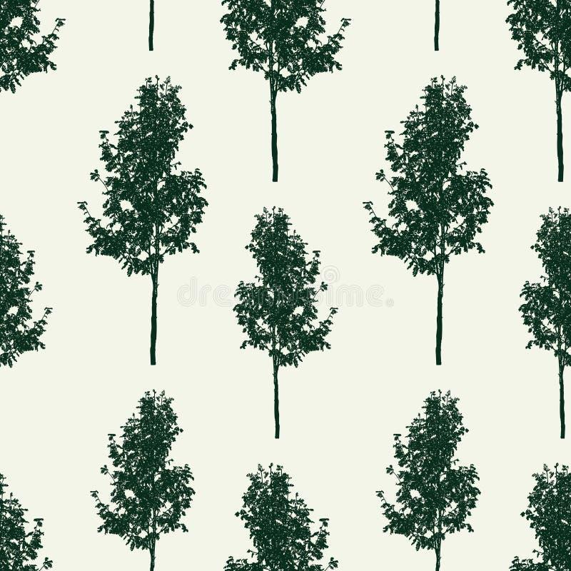Fundo sem emenda de árvores de Rowan pequenas ilustração royalty free