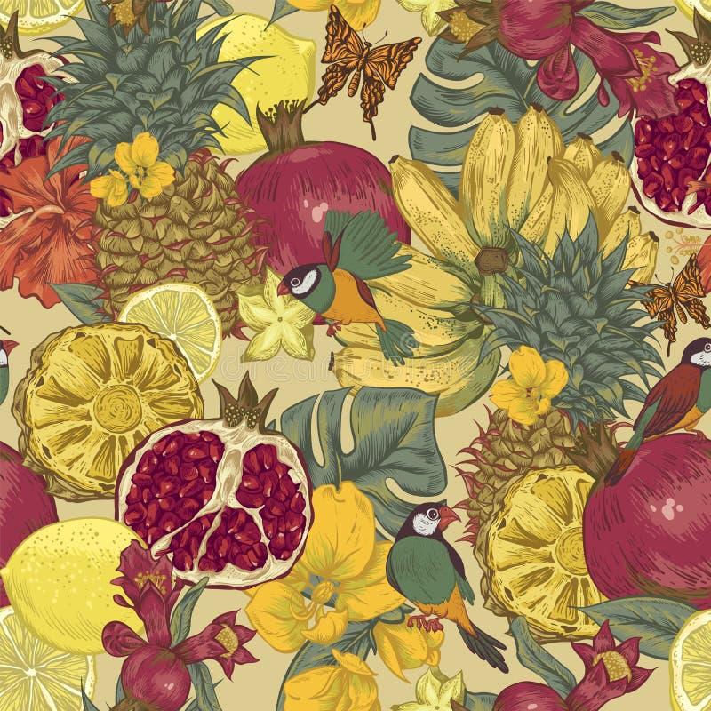 Fundo sem emenda do vintage, fruto tropical ilustração do vetor