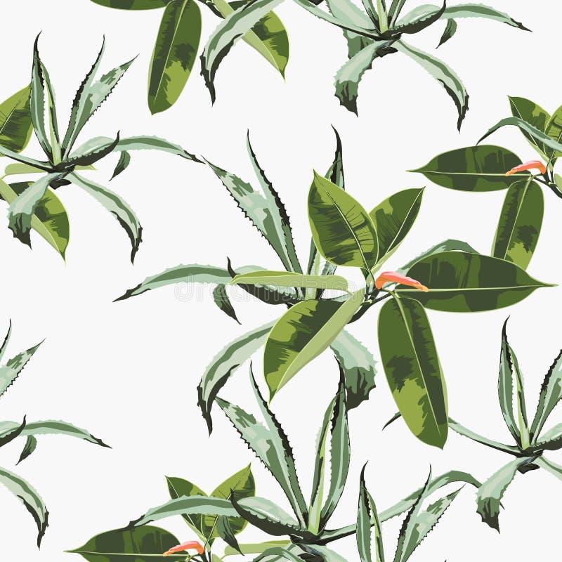 Fundo sem emenda floral do teste padrão do vetor bonito com agave e ficus ilustração royalty free