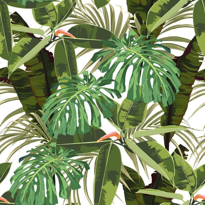 Fundo sem emenda tropical com as folhas brilhantes do monstera da palma, ficus do teste padrão, folha da selva ilustração do vetor
