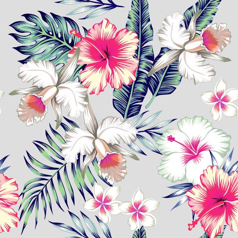 Fundo sem emenda tropical do hibiscus e das orquídeas ilustração stock
