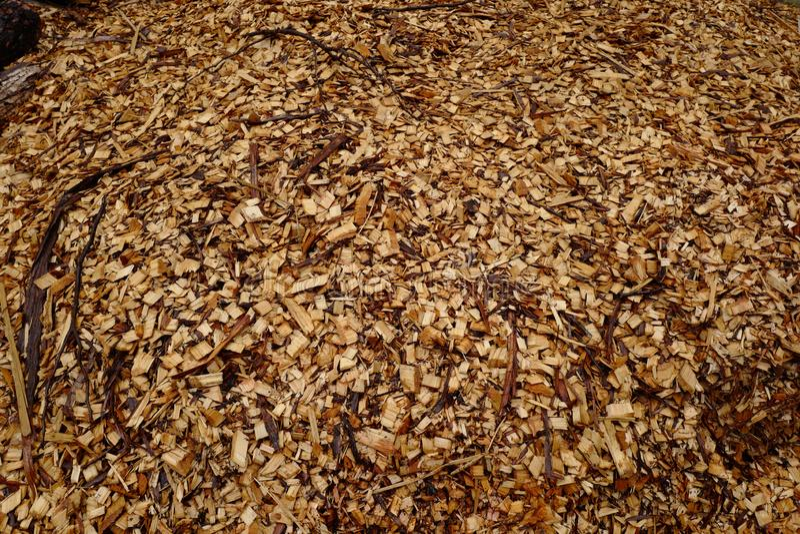 Fundo: Serragem de madeira imagem de stock