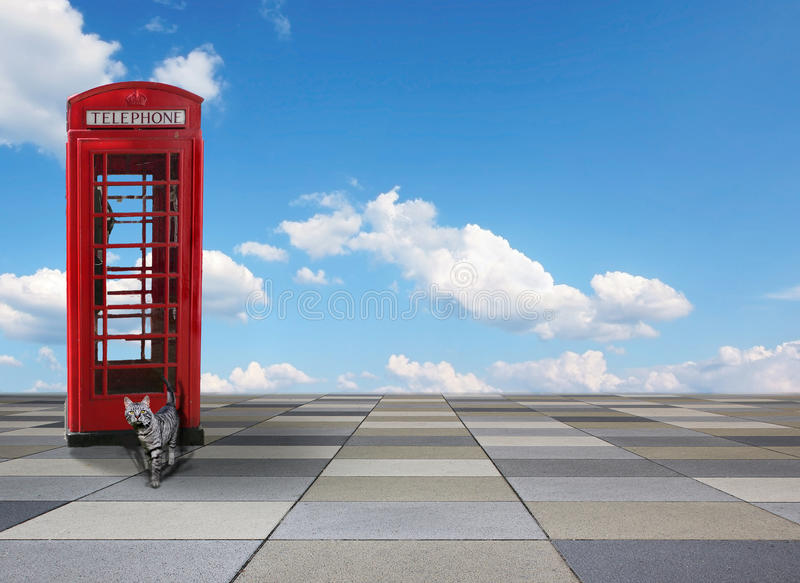 Fundo telhado com a caixa britânica do telefone, o gato de gato malhado e o céu azul fotos de stock