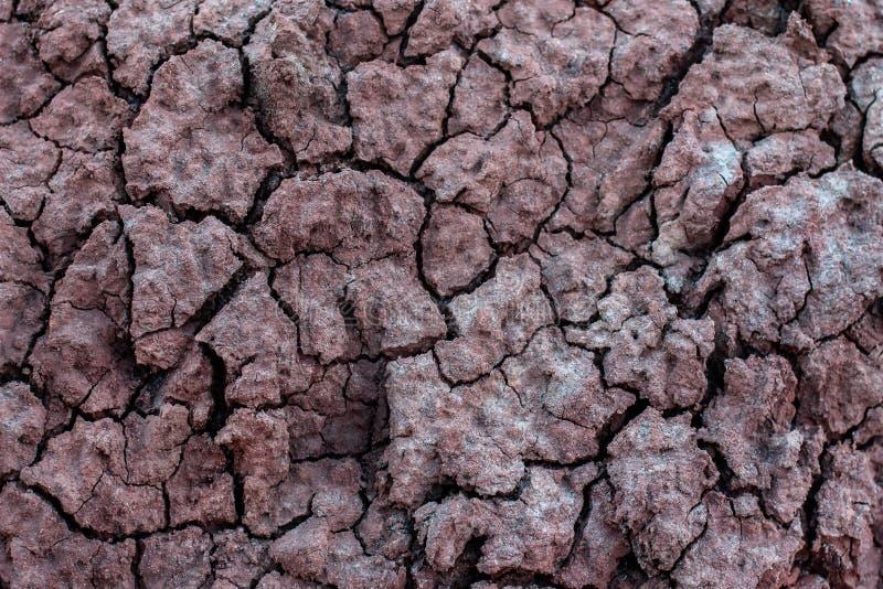 Fundo, textura da terra Abstrac??o natural imagens de stock