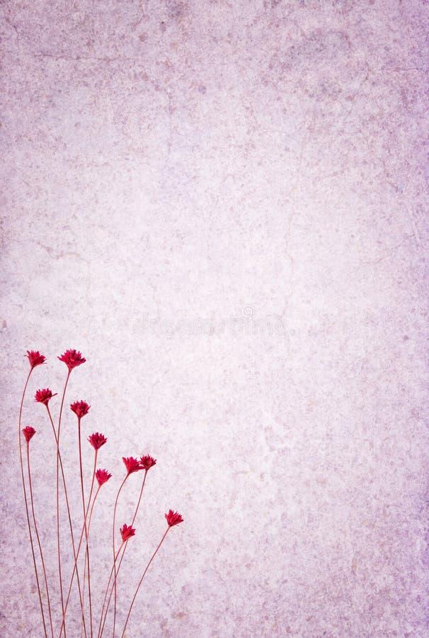 Fundo Textured com flores fotos de stock royalty free