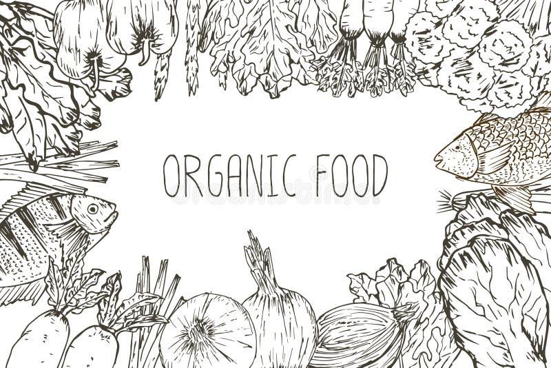 Fundo tirado m?o do alimento biol?gico ilustração do vetor