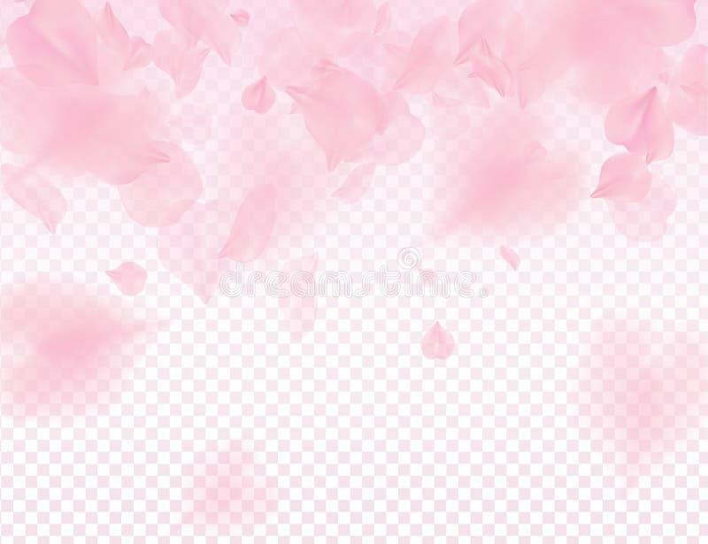 Fundo transparente das pétalas cor-de-rosa de sakura Muita ilustração romântica de queda do dia de Valentim das pétalas 3D Luz ma ilustração do vetor
