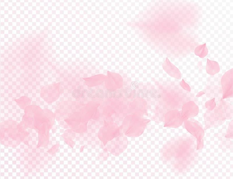 Fundo transparente de queda do vetor das pétalas da flor cor-de-rosa de sakura ilustração romântica do dia de Valentim 3D Luz mac ilustração stock