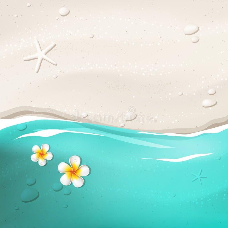 Fundo tropical ilustração stock