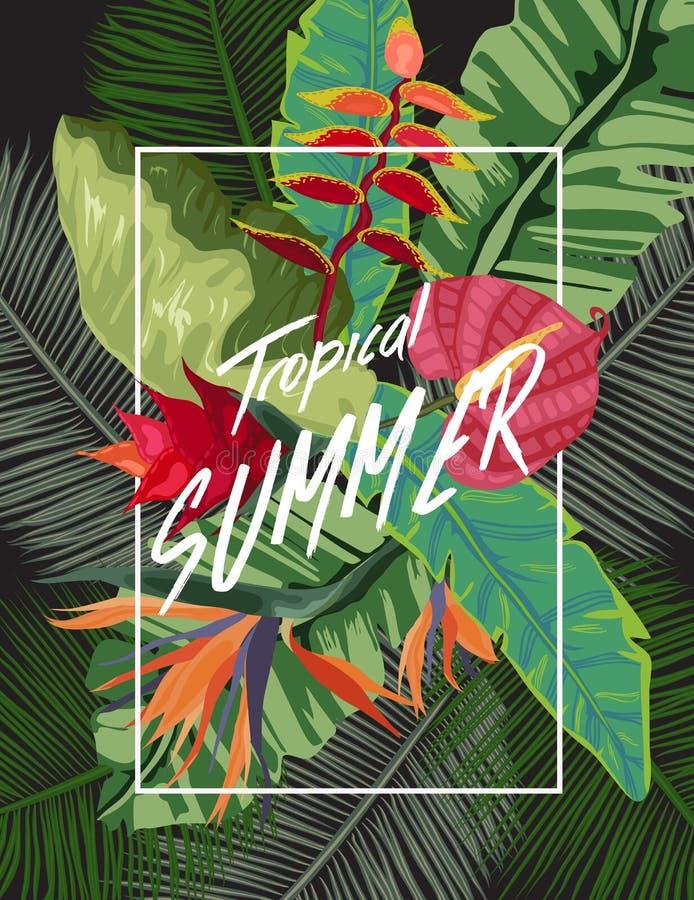 Fundo tropical brilhante com plantas da selva Teste padrão exótico com folhas de palmeira ilustração royalty free