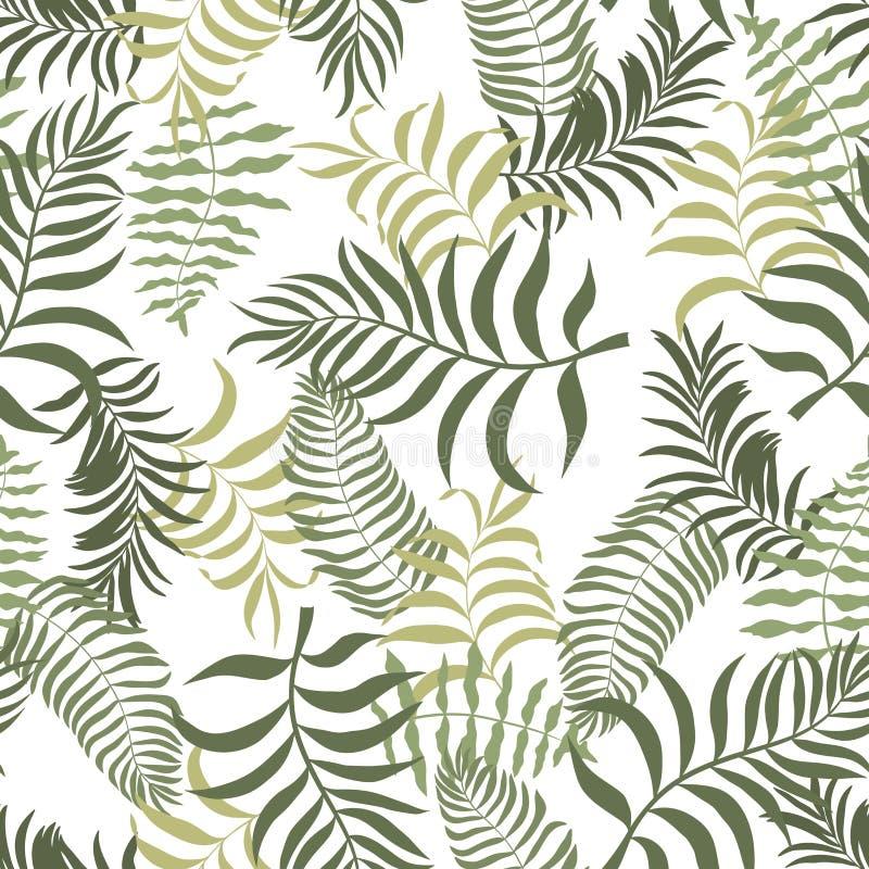 Fundo tropical com folhas de palmeira Teste padr?o floral sem emenda Ilustra??o do vetor do ver?o fotografia de stock royalty free