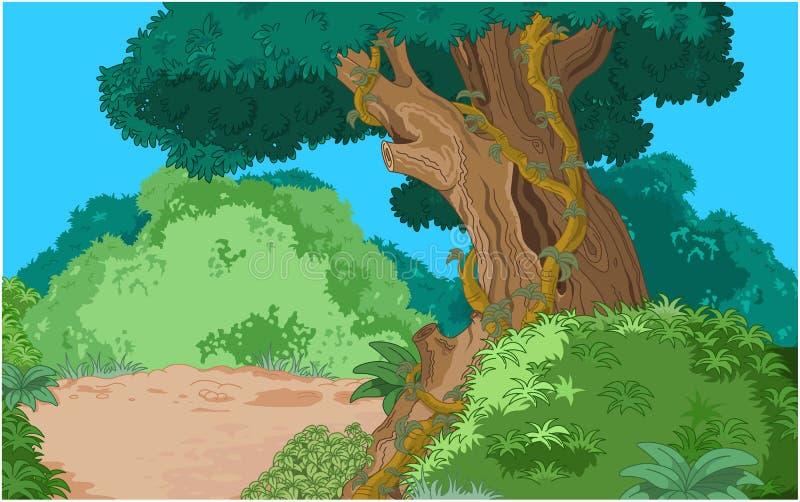 Fundo tropical da floresta ilustração royalty free