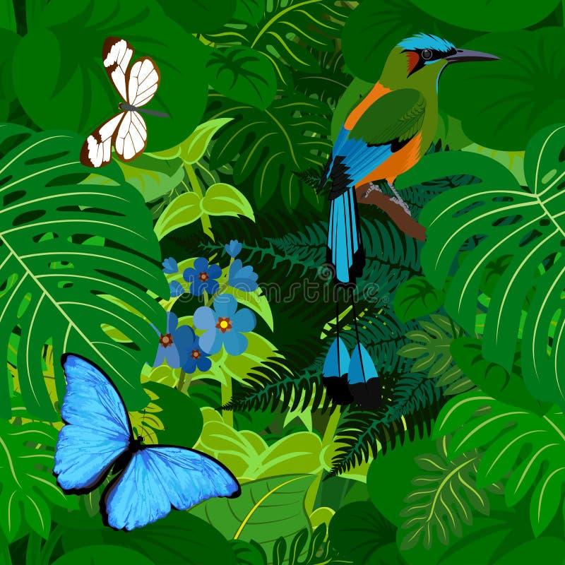 Fundo tropical da selva da floresta úmida do vetor sem emenda com motmot e borboletas ilustração do vetor