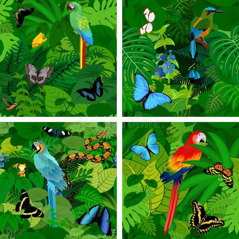Fundo tropical da selva da floresta úmida do vetor sem emenda com papagaios ilustração royalty free