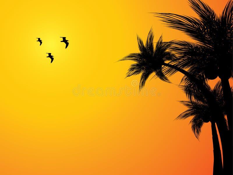 Fundo tropical do por do sol ilustração royalty free