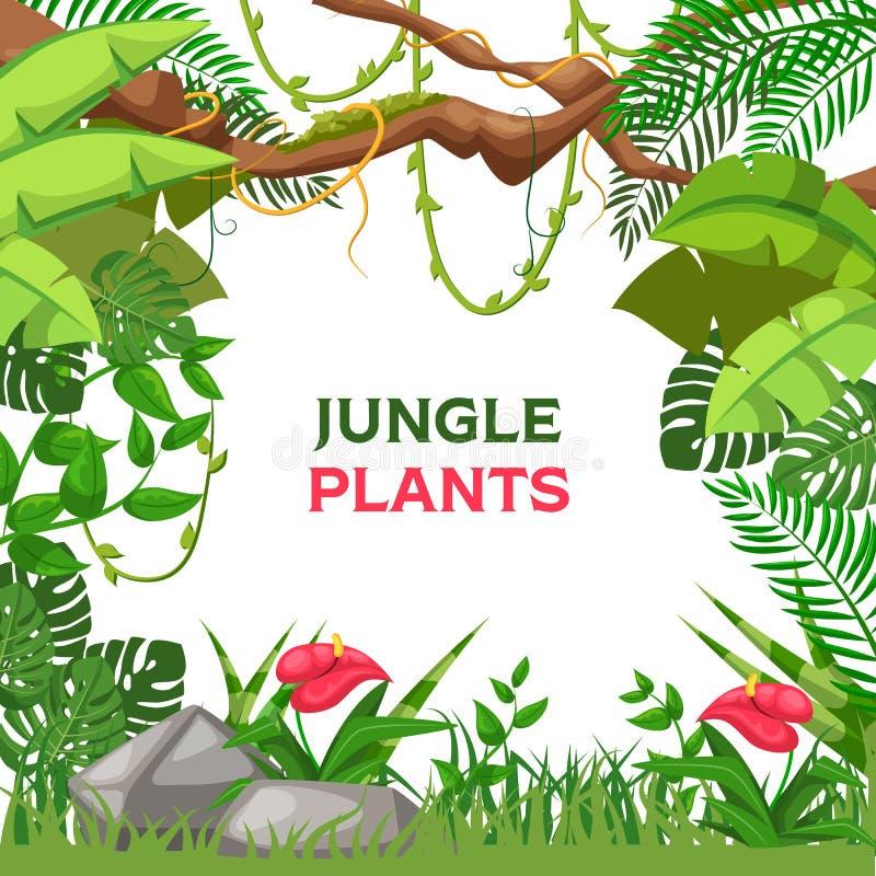 Fundo tropical do verão com vetor das plantas da selva ilustração stock