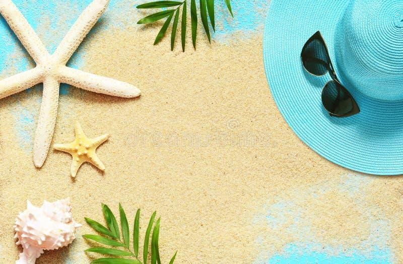 Fundo tropical Ramos de palmeiras com estrela do mar e concha do mar no fundo arenoso Curso Copie o espa?o imagem de stock