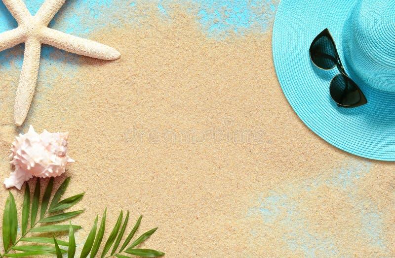 Fundo tropical Ramos de palmeiras com estrela do mar e concha do mar no fundo arenoso Curso Copie o espa?o fotografia de stock