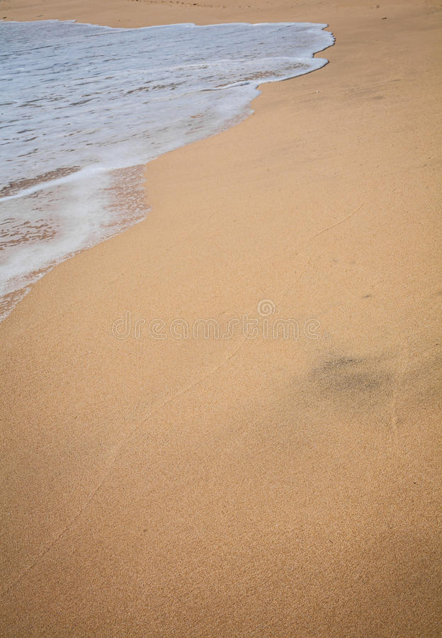 Fundo tropical surfando bonito da praia da areia fotografia de stock royalty free