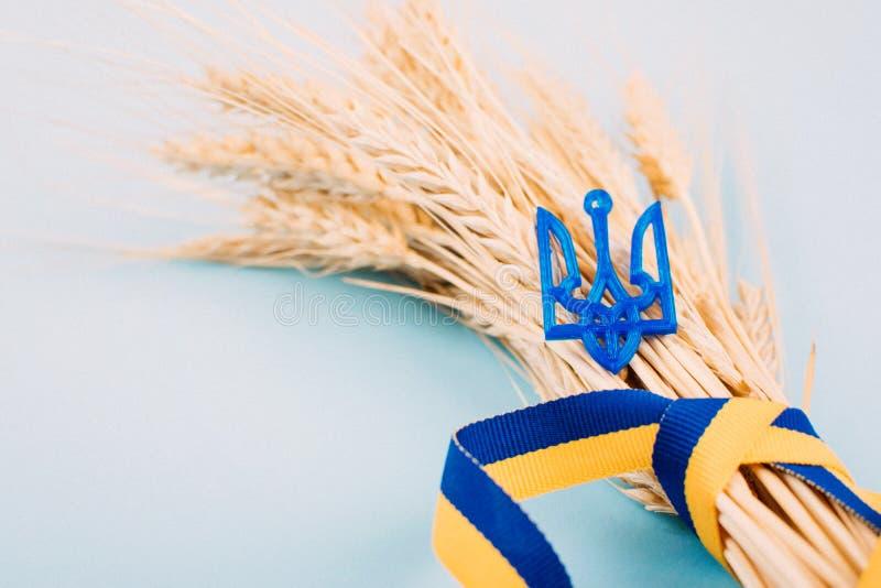 Fundo ucraniano com a fita de símbolos nacionais, de tridente da brasão, amarela e azul, spikelets dourados do trigo no azul 2019 imagem de stock royalty free