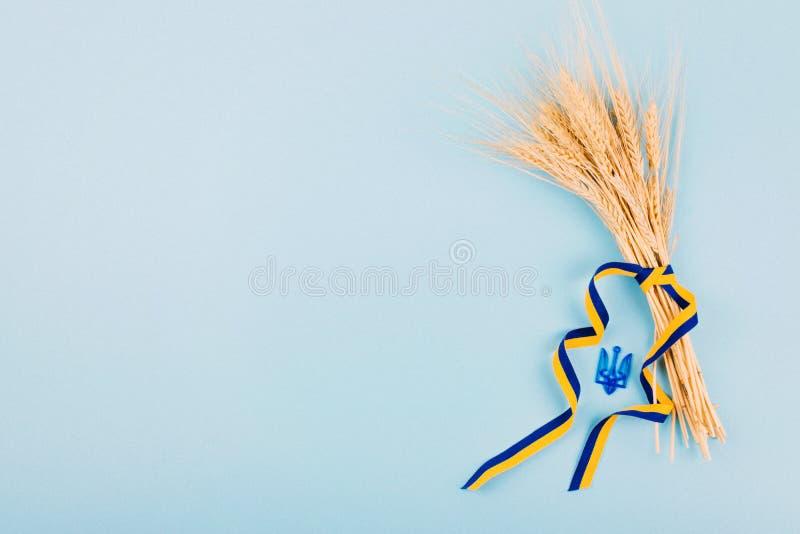 Fundo ucraniano com a fita de símbolos nacionais, de tridente da brasão, amarela e azul, spikelets dourados do trigo no azul 2019 foto de stock