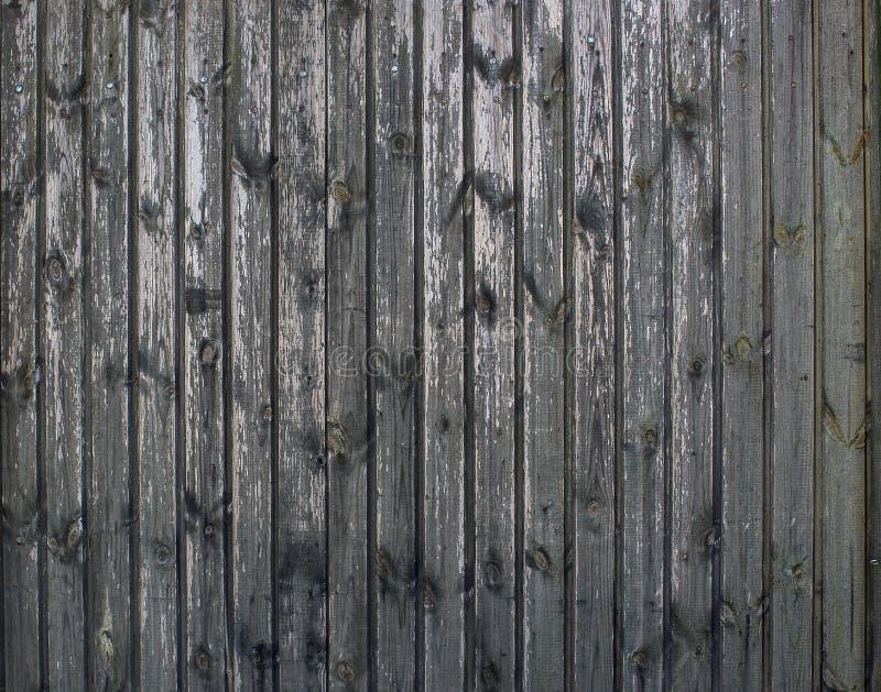 Fundo velho de madeira sem emenda das pranchas do vintage cinzento Weathered rachou a parede com descascamento da pintura, fundo  foto de stock