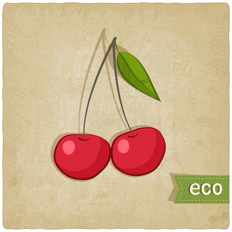 Fundo velho do eco do fruto ilustração royalty free