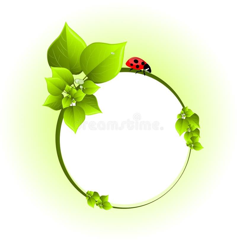 Fundo verde ilustração stock