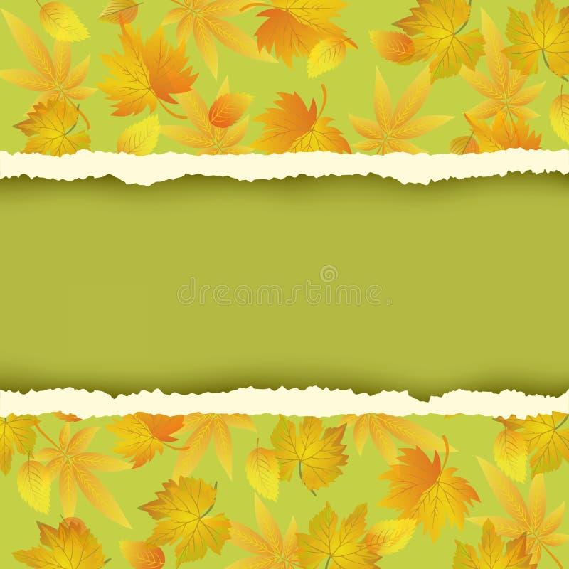 Fundo verde com as folhas de outono coloridas ilustração royalty free