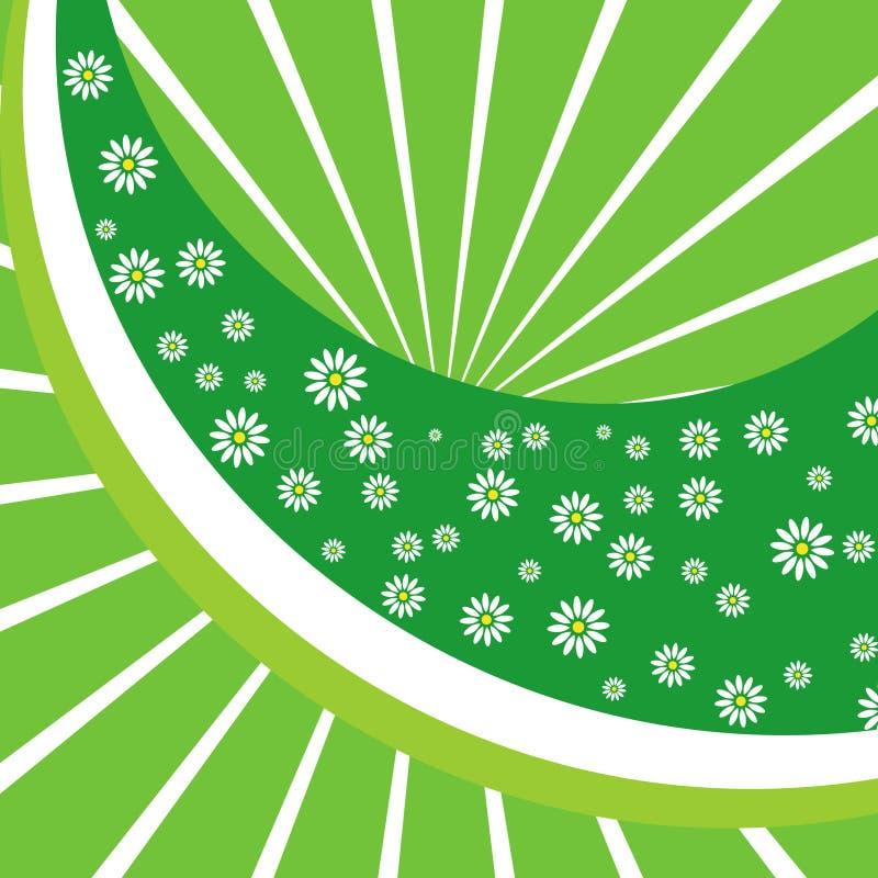 Download Fundo verde com cammomiles ilustração do vetor. Ilustração de fresco - 12803241