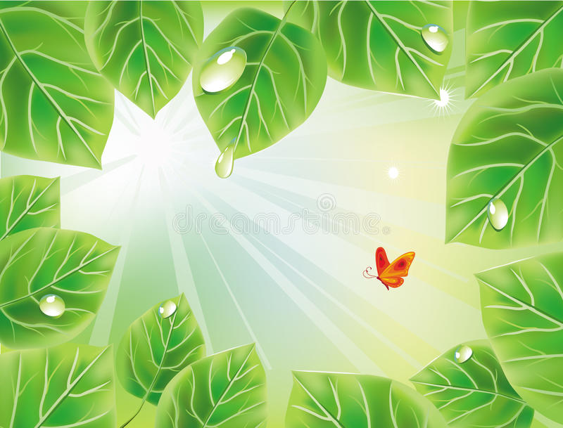 Fundo verde com folhas ilustração do vetor