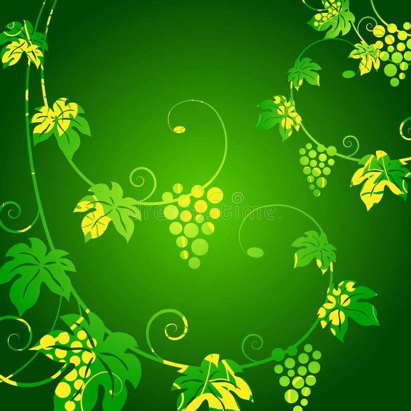 Fundo verde das vinhas. ilustração stock