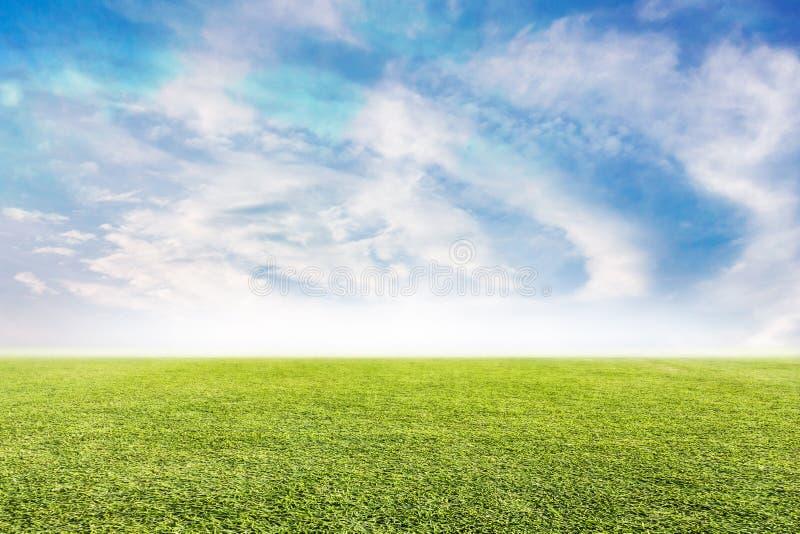 Fundo verde do gramado e do céu fotografia de stock royalty free